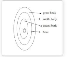 Trika Philosophy _types of body